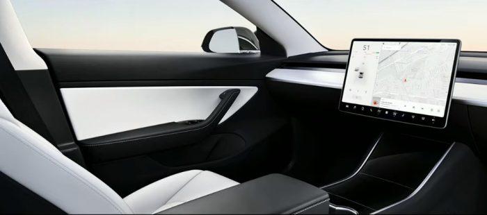 Tesla Robo Taxi - No Steering Wheell